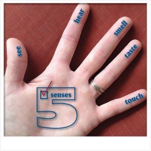 adgi-senses-photo